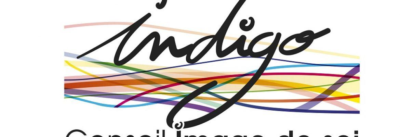 INDIGO conseil en image